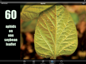 picture of iPad screen