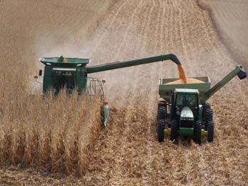 On-Farm Test Plots