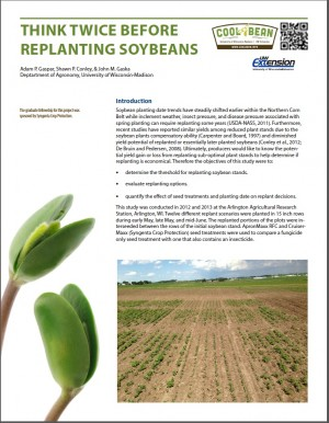 Soybean-replanting-doc