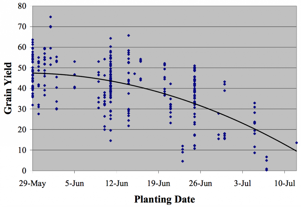 Planting date effect