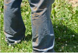 Figure 2. Stripe rust spore on denim jeans