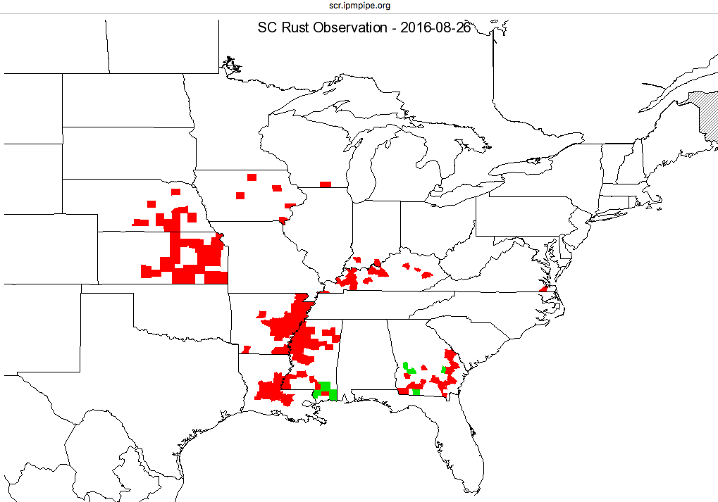 Corn Southern Rust positive confirmation map, by state county