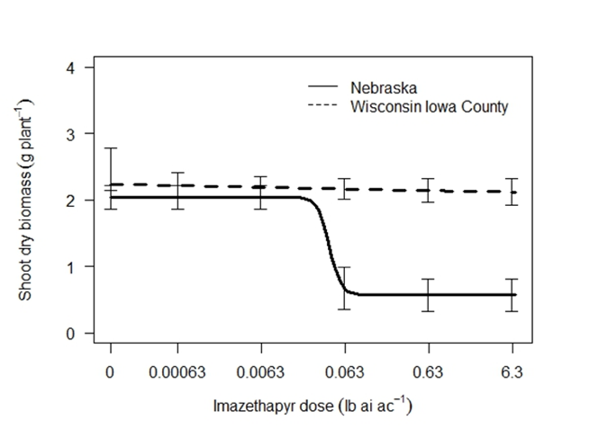 Figure 3. Response of Iowa County and Nebraska Palmer amaranth populations to i.mazethapyr (Pursuit) 28 days after treatment. The labelled rate (1X) is 0.063 lb ai ac-1
